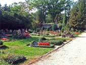 Neuer Friedhof – Abteilung A